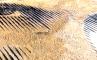 Масштаб, фото №3