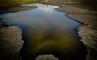Битумное озеро Питч Лейк, фото №1