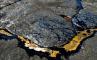 Битумное озеро Питч Лейк, фото №8